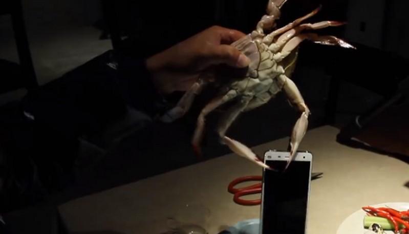 Xiaomi Mi 4 test lobster