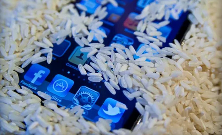 Ponsel di beras