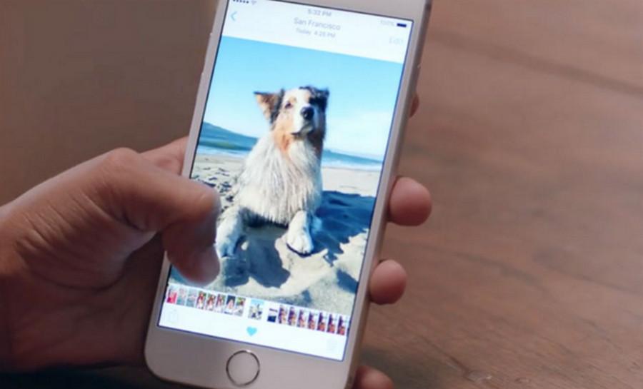 Live Photos di iPhone 6s