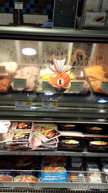 magikarp-grocery-store-pokemon-go