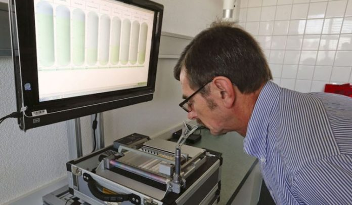 Artificial Intelligence Nanoarray