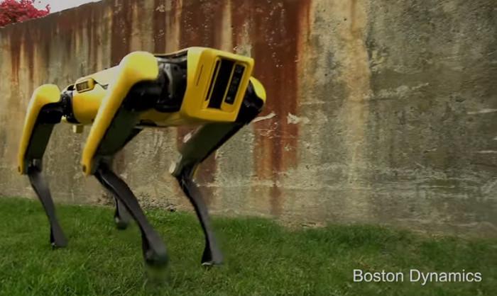 Robot Anjing Ini Bisa Bantu Bersihkan Rumah