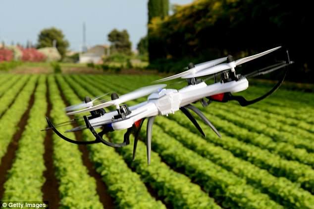 Otoritas Florida akan Gunakan Drone untuk Basmi Nyamuk
