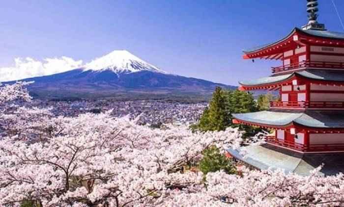 12 Aplikasi Traveling Terbaik yang Wajib Diunduh Sebelum ke Jepang