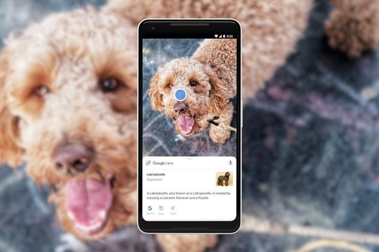 Keren! Google Lens Kini Bisa Kenali 1 Miliar Item