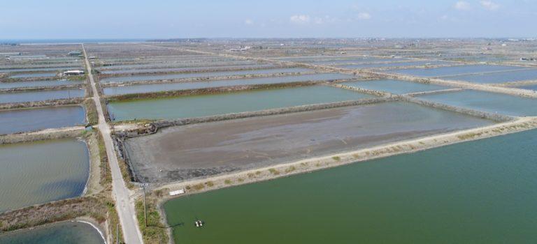Google Garap Proyek Energi Tenaga Surya di Taiwan