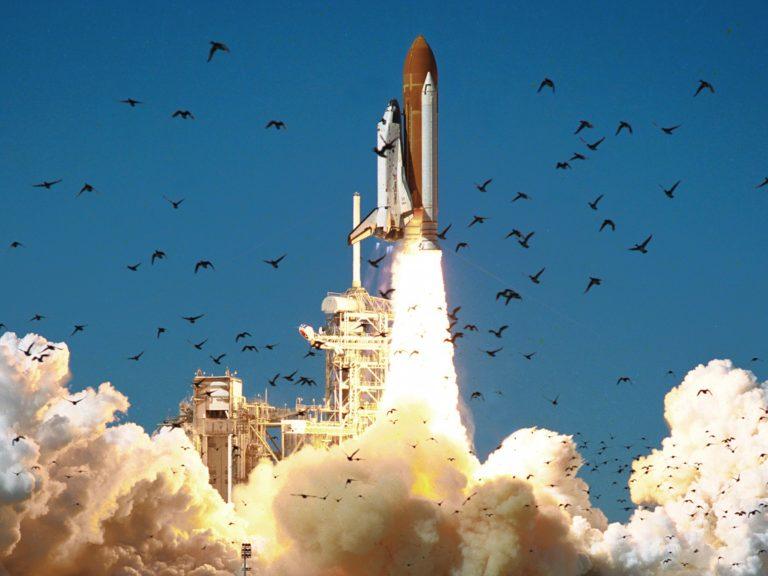 Waduh! Roket SpaceX Bisa Terbakar Gara-gara Kotoran Burung