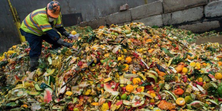 Keren! Tempat Sampah Pintar Ini Bisa Kurangi Limbah Makanan