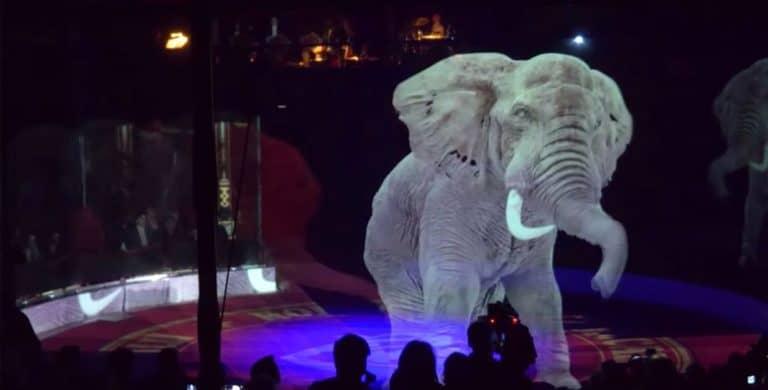 """Keren! Sirkus Ini Tampilkan Pertunjukan """"Hewan Hologram"""""""