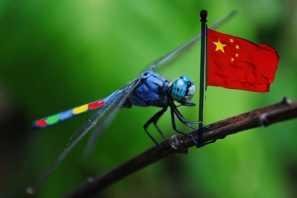 Lagi, Google Mengaku Sudah Setop Project Dragonfly