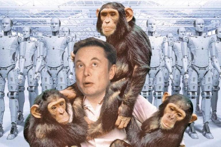 Elon Musk: AI Bikin Manusia Mirip Simpanse