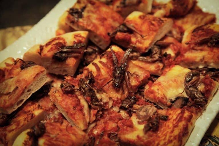 Hiii Merinding… Pizza Masa Depan Dibuat dari Adonan Serangga