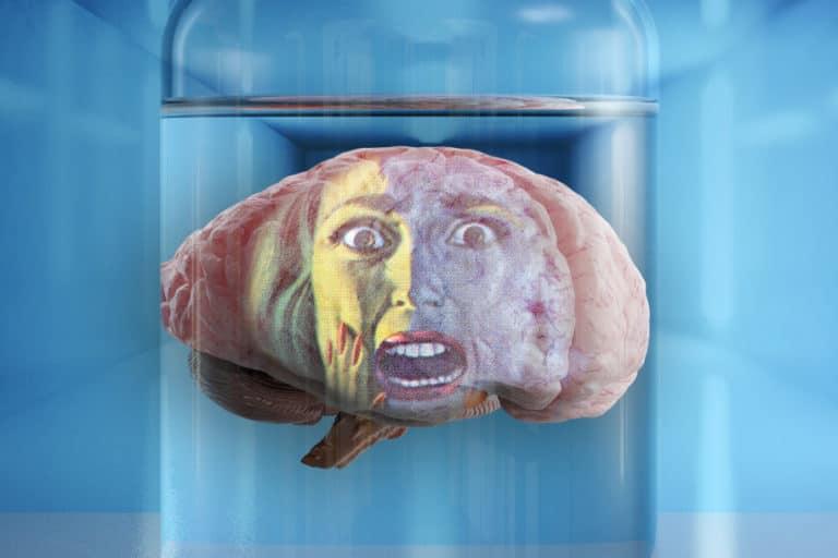 "Ngeri! Ilmuwan Takut ""Otak Mini"" Manusia Hidup Tanpa Tubuh"