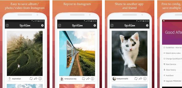 download foto di instagram QuickSave