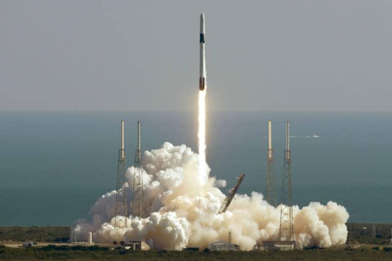 Hiii… SpaceX Terbangkan Monster Tikus ke Luar Angkasa