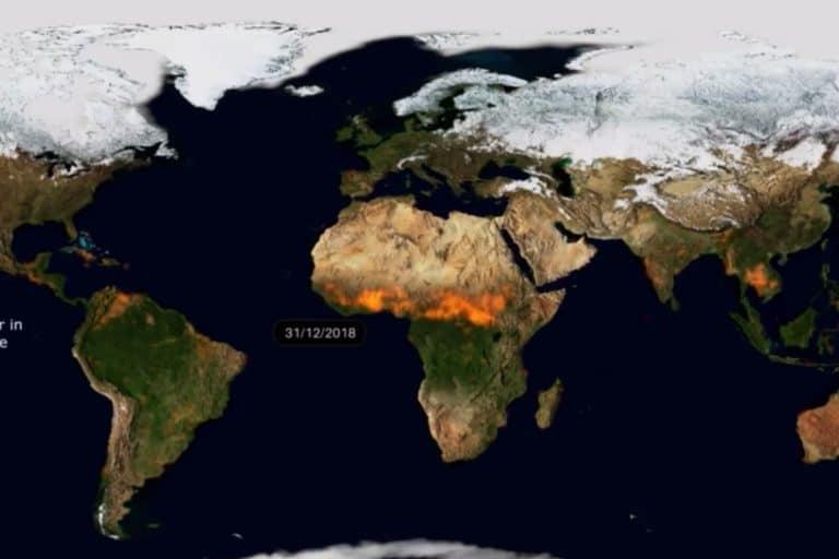 Video Ungkap Skala Kebakaran Hutan di 2019, Lalap Sebagian Bumi
