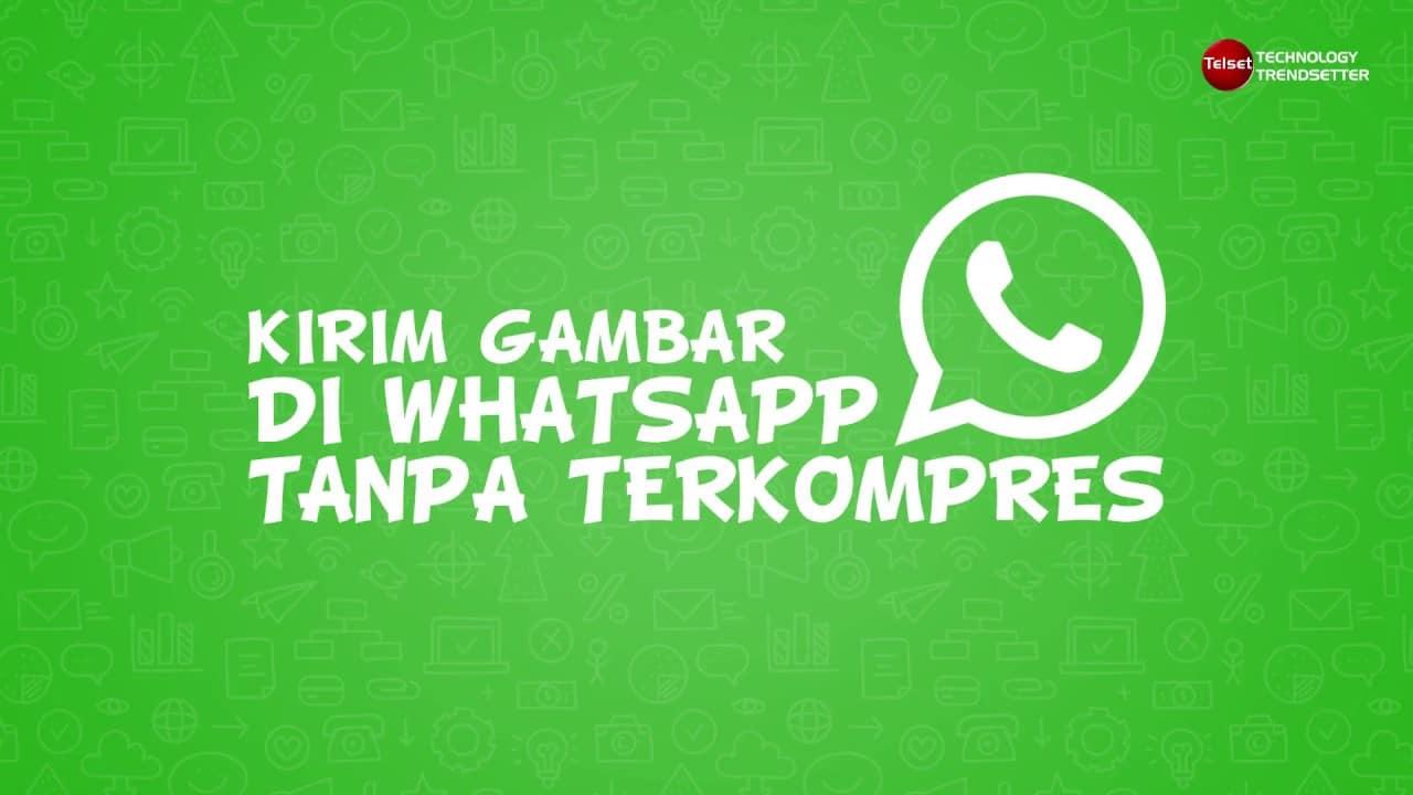 Cara Kirim Gambar di WhatsApp Tanpa Terkompres
