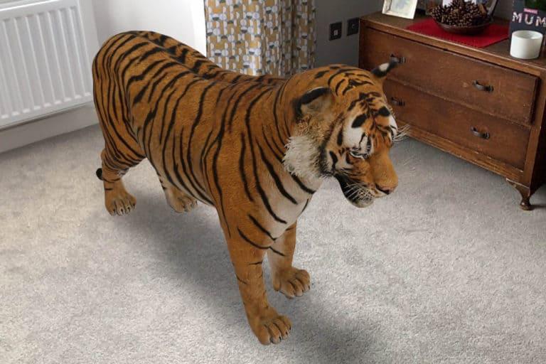 Datangkan Binatang Virtual di Rumah dengan Google AR