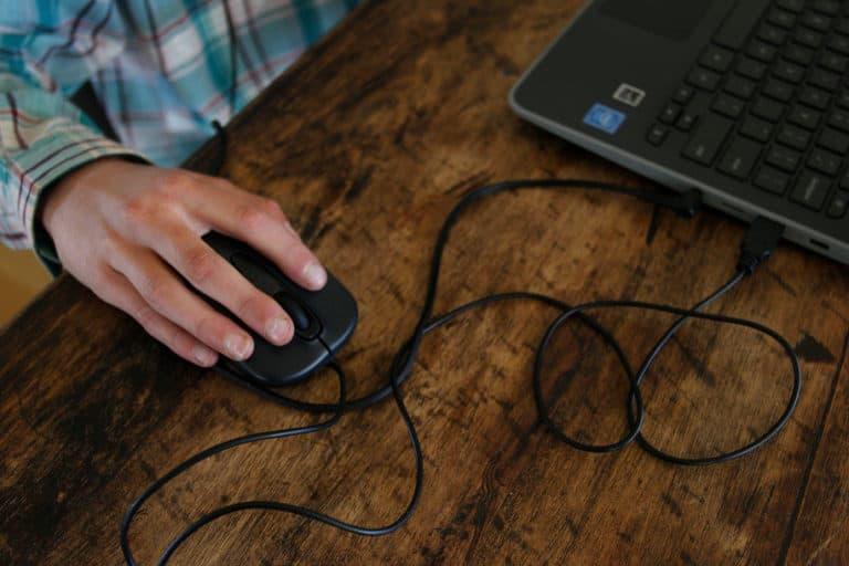 Penanganan Corona Terhambat karena Dunia Minim Internet