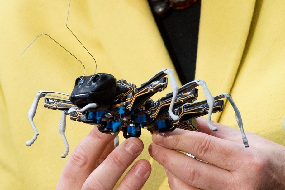 Peneliti akan Kirim Robot Serangga untuk Jelajahi Planet Lain