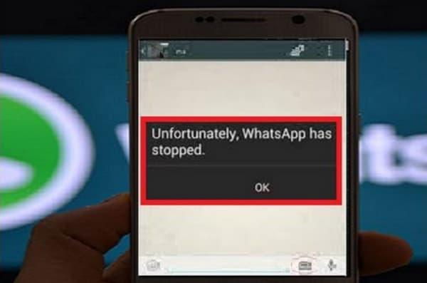 WhatsApp error setelah upgrade