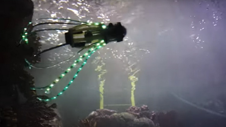 Robot Cumi-cumi Ini Mampu Jelajahi Laut Dalam (VIDEO)