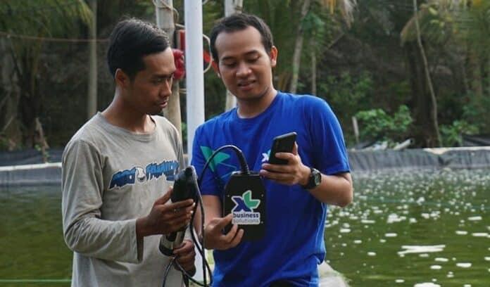 XL Smart Aquaculture petani tambak ikan