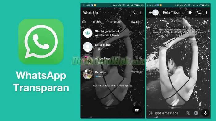 WhatsApp MOD APK Android iOS WhatsApp Transparan