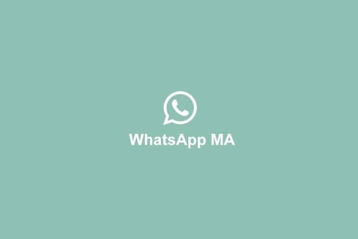 WhatsApp MOD APK Android iOS WhatsApp MA