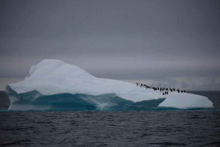 Ilmuwan Bingung, Antartika Diguncang 30.000 Gempa Sejak Agustus