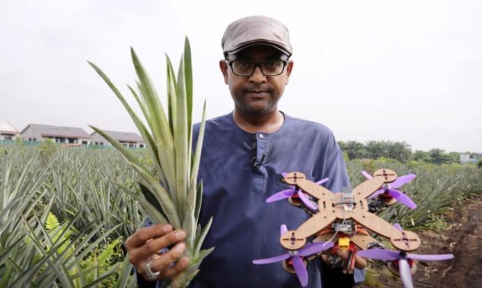 Drone Daun Nanas