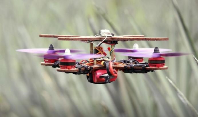 Peneliti Malaysia Bikin Drone dari Daun Nanas, Bagaimana Caranya?