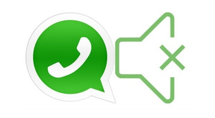 Mute WhatsApp