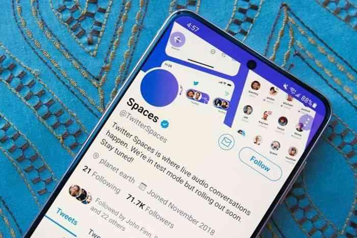 Pengguna Twitter Spaces