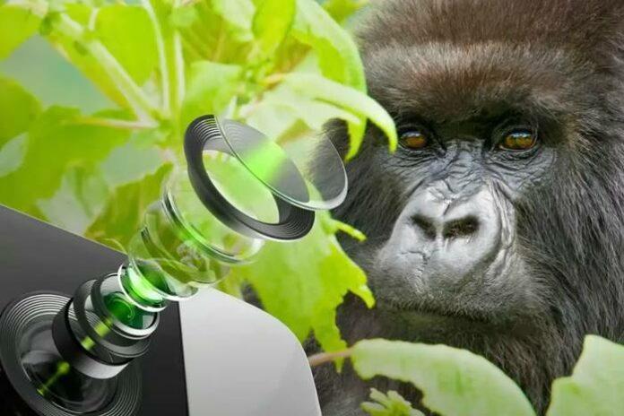 gorilla glass kamera smartphone