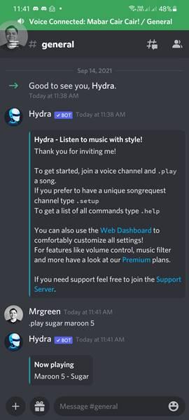 Cara Menggunakan Bot Musik Discord