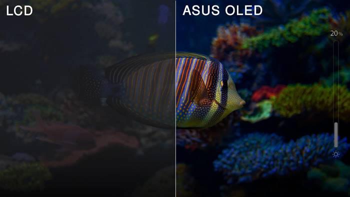 Laptop Asus Layar OLED